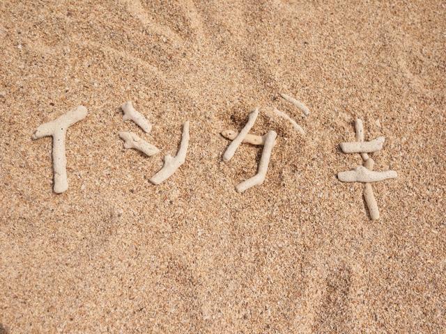 春休み石垣島旅行記・その1。ファミリー向けのホテルはどこ?持ち物リストあり。